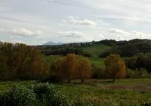 """Il sito scelto dal Comune di Benevento per il depuratore è frutto di """"forzati errori""""."""